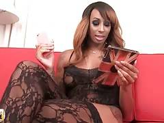 Ebony TS Honey Foxx wants to find a guy to spend a night with.